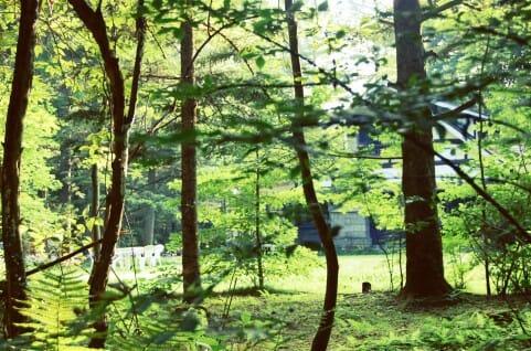 国内旅行でリフレッシュ!軽井沢旅行で行きたいスポット6選!!